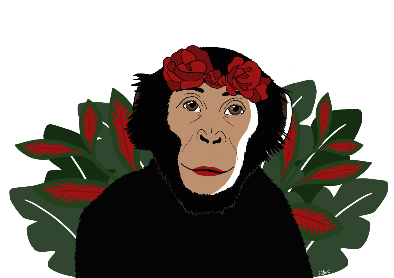 Las Bonobas